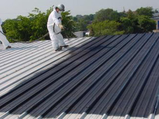 roof_repair_Mpumalanga_Rubber_Pictures3201