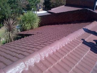 roof_repair_Mpumalanga_Rubber_Pictures3204
